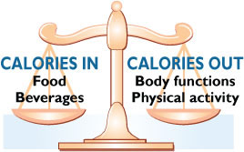calorie scale balance
